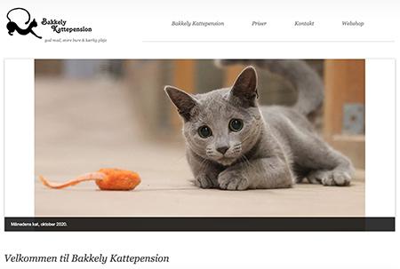 Websites og webshops